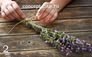 Как применяется шалфей для окрашивания волос: преимущества и недостатки, правила и особенности окраски, рецепты окрашивающих составов, отзывы