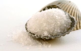 Соль от перхоти, рецепты как правильно применять, лечение кожи головы морской солью