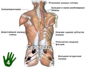 Как делать массаж спины: техника выполнения в домашних условиях, обучающее видео
