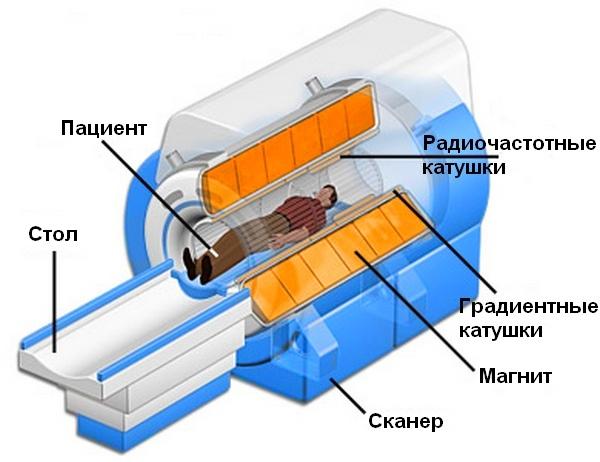КТ позвоночника: что показывает компьютерная томография, где можно сделать