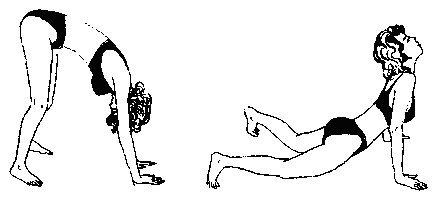 Упражнения Поля Брегга для позвоночника: видео, 5 видов упражнений для восстановления спины