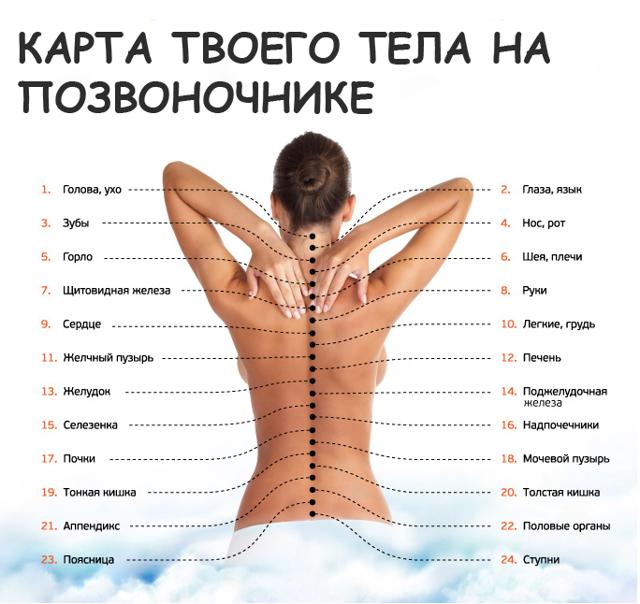 Пластыри от боли в спине (перцовые, обезболивающие): как клеить от воспаления, отзывы