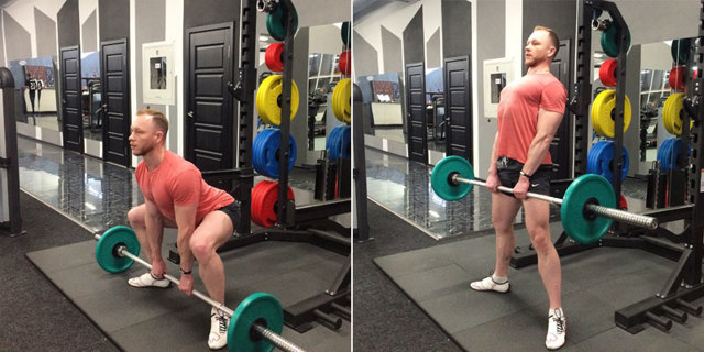 Мышцы поясницы (квадратная, грушевидная и другие): анатомия и функции, способы укрепления