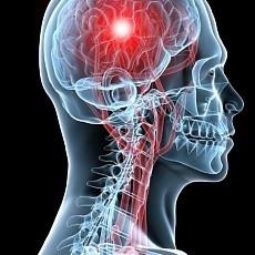 Лечение болезни Паркинсона: как лечить у пожилых, к какому врачу обращаться