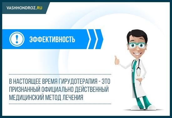 Пиявки при остеохондрозе шейного отдела: отзывы о лечении гирудотерапией, особенности