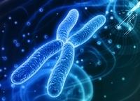 Синдром Шерешевского-Тернера: кариотип, лечение и причины возникновения, мозаичная форма