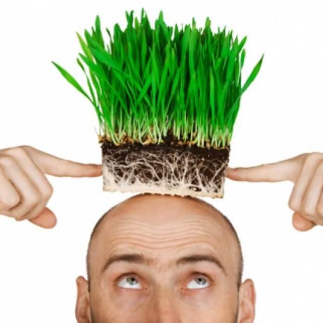 Лазерное лечение волос: отзывы о восстановлении локонов лазером, цена, плюсы и минусы, лучшие приборы для домашнего применения