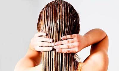 Алоэ для волос от выпадения: научное мнение, отзывы, рецепты масок с медом и другими добавками, правила применения