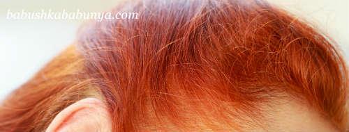 Как закрасить седину хной и басмой: можно ли это сделать, отзывы, технология, сколько нужно держать, как хорошо скрывают седые волосы натуральные красители