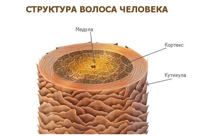 Гидроперит для обесцвечивания волос или осветление волос гидроперитом в домашних условиях