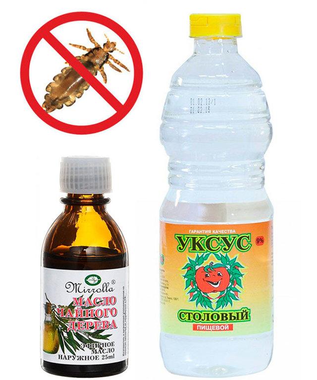 Водка от вшей и гнид: отзывы, спирт от педикулеза, рецепты растворов, инструкция по применению, можно ли вывести паразитов этим методом