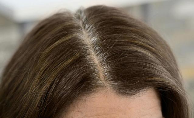 Предпигментация седых волос: в чем суть процедуры, отзывы, инструкция по проведению, при какой седине лучше всего подойдет