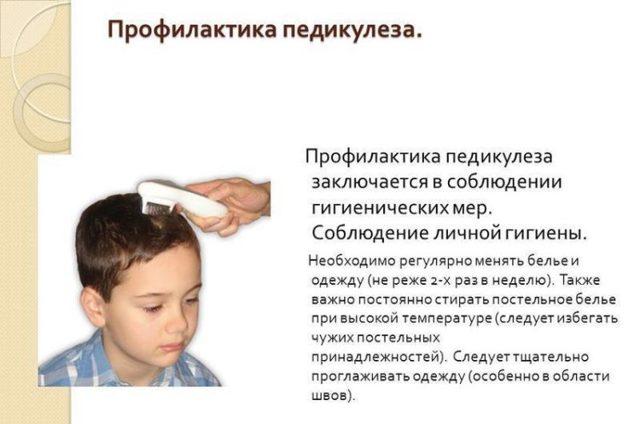 Откуда берутся вши: от чего появляются, как передаются, от чего заводятся у человека изначально на голове, прыгают ли они, как можно заразиться