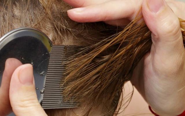 Чемеричная вода для роста волос: принцип действия и способы применения, отзывы