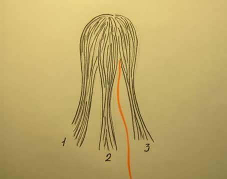 Как вплести ленту в косу: схема плетения косичек поэтапно с фото, пошаговые видео уроки для начинающих, вплетание в колоски бантов, голливудская волна, с 3 атласными ленточками и другие варианты прически, кому подходит, способы укладки, плюсы и минусы, примеры знаменитостей