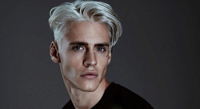Серый цвет волос у мужчин: фото модного пепельного оттенка, как покрасить и подобрать нужный тон, обзор красок, кому идет этот цвет